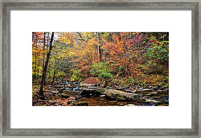 Along Fall Creek Framed Print