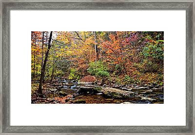 Along Fall Creek Framed Print by Paul Mashburn