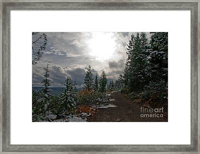 Along Ridge Road Framed Print by Cari Gesch