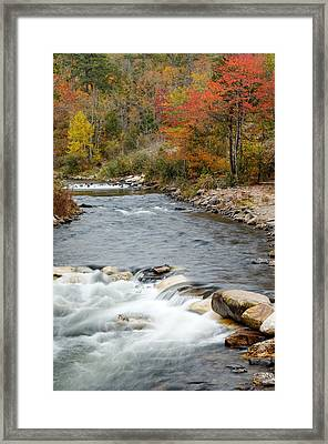 Along The Banks Of The Mountain Fork River Framed Print