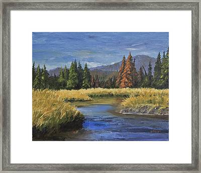 Along The Big Thompson Framed Print by Bev Finger