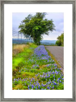 Along The By Ways Framed Print by Joan Bertucci