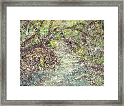 Along The Creek Framed Print by Alys Caviness-Gober