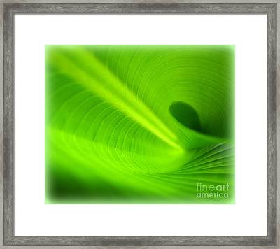 Along The Curve Framed Print by C Ray  Roth