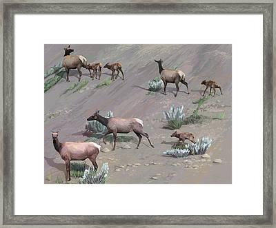 Along The Hillside Framed Print
