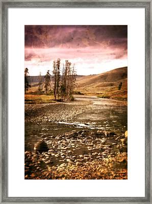 Along The Larmar River 2 Framed Print by Marty Koch