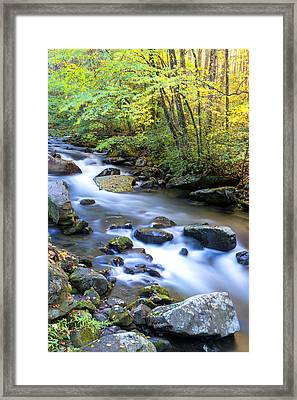 Along The Oconaluftee River Framed Print by Andres Leon