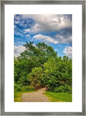 Along The Path Framed Print