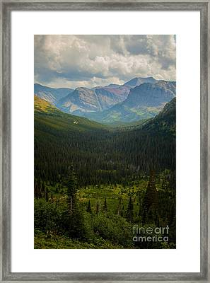 Along The Path To Iceburg 18 Framed Print by Natural Focal Point Photography