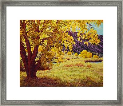 Along The Rio Grande Framed Print