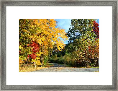 Framed Print featuring the photograph Along The Road 2 by Kathryn Meyer