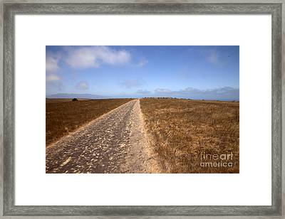 Along The Road Framed Print by Amanda Barcon