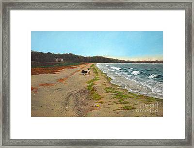Along The Shore In Hyde Hole Beach Rhode Island Framed Print by Christopher Shellhammer