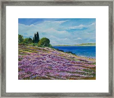 Along The Shore Framed Print by Sinisa Saratlic