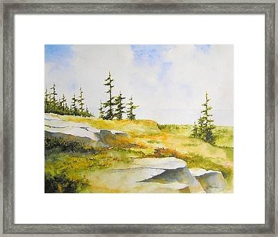 Along The Superior Hiking Trail Framed Print