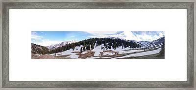 Along The Trail Framed Print by Nicholas Harte