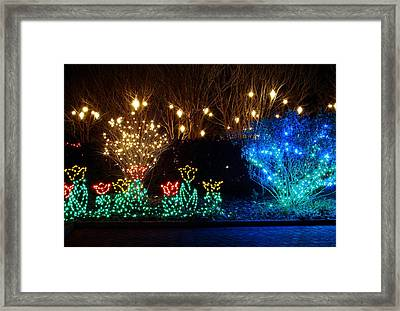 Along The Walk Framed Print