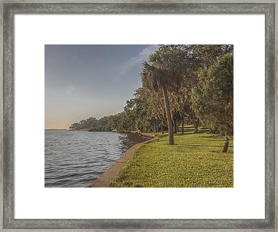Framed Print featuring the photograph Along The Wall by Jane Luxton