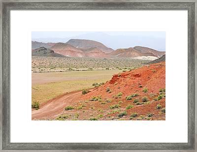 Alot Of Colors Framed Print by Marilyn Diaz