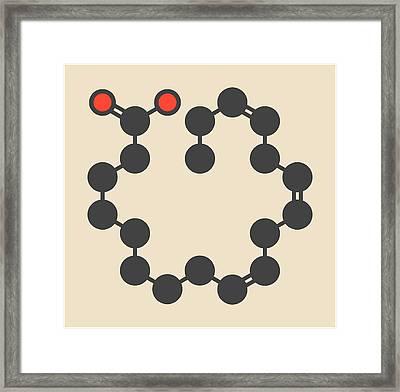 Alpha-linolenic Acid Molecule Framed Print