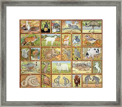 Alphabetical Animals Framed Print by Ditz