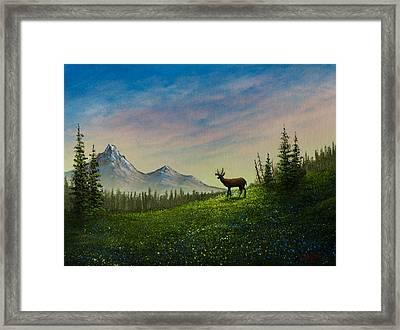 Alpine Beauty Framed Print by C Steele