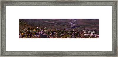 Alpine Floral Meadow Framed Print