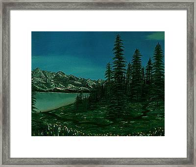 Alpine Garden Framed Print by Barbara St Jean