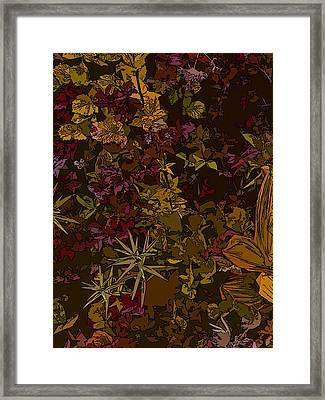 Alpine Groundcover Framed Print by Anne Havard