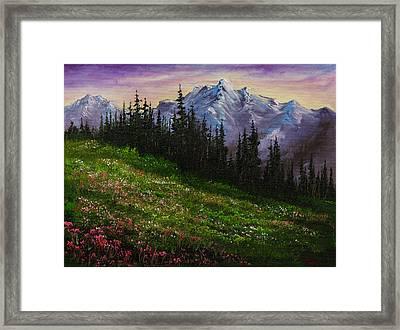 Alpine Meadow Framed Print by C Steele