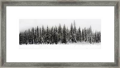 Winter Scene // Whitefish, Montana  Framed Print by Nicholas Parker
