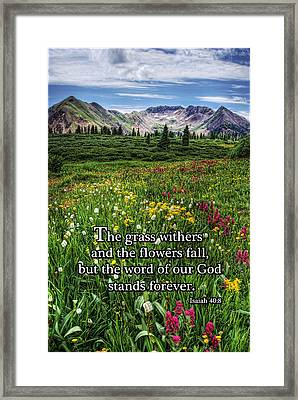 Alpine Meadow Framed Print by Priscilla Burgers