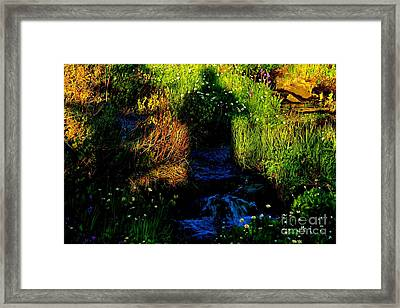Alpine Shadow  Framed Print by Tim Rice