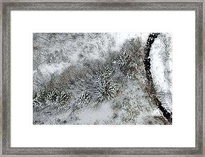 Alpine Snow Trees Framed Print by Stephen Richards