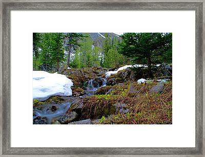 Framed Print featuring the photograph Alpine Spring  by Kevin Bone