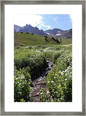 Alpine Stream Framed Print