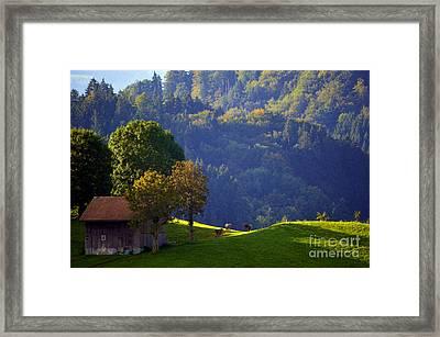 Alpine Summer Scene In Switzerland Framed Print