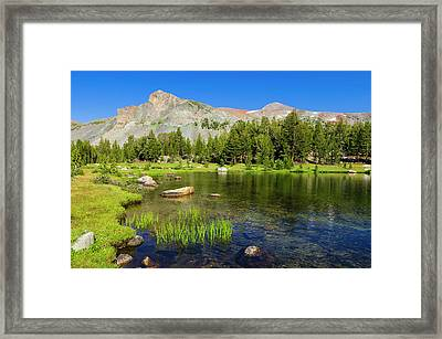 Alpine Tarn In Dana Meadows Under Mount Framed Print