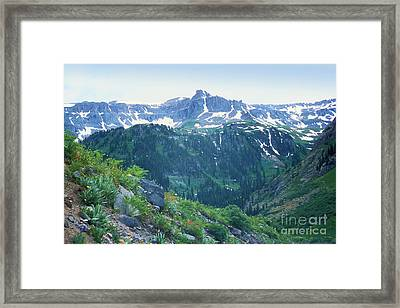 Alpine Vista Near Durango Framed Print