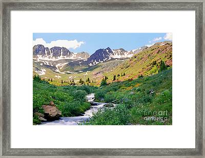 Alpine Vista With Wildflowers Framed Print