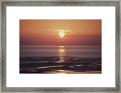 Already Gone Framed Print