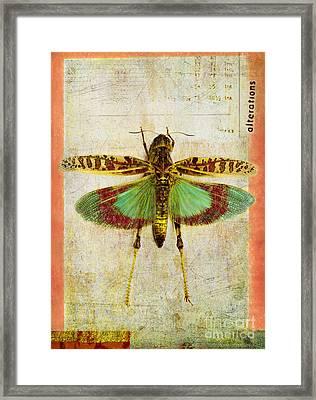 Alterations Framed Print