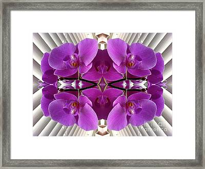 Orchids In The Window - Enhanced Framed Print by Carol Groenen