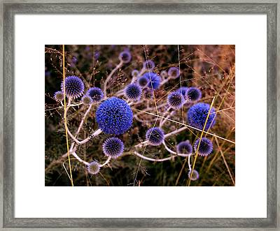 Alternate Universe Framed Print