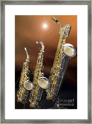Alto Tenor Baritone Saxophone Photo In Color 3461.02 Framed Print by M K  Miller