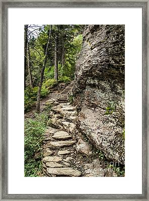 Alum Cave Trail Framed Print by Debbie Green