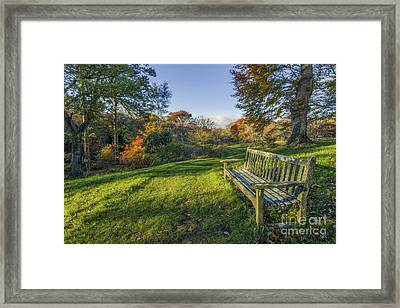Always Dreaming Framed Print by Ian Mitchell
