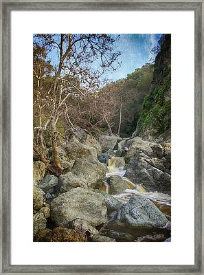 Always In My Heart Framed Print by Laurie Search
