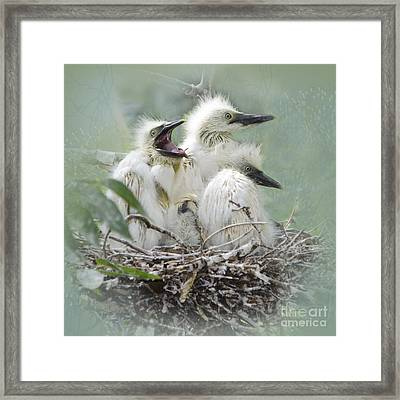 Always One In A Crowd Framed Print by Betty LaRue