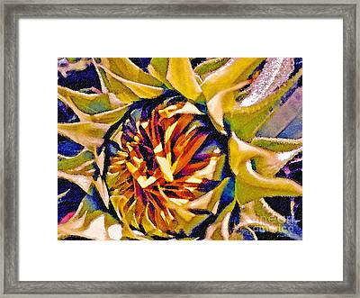 Framed Print featuring the photograph Always Summer by Gwyn Newcombe